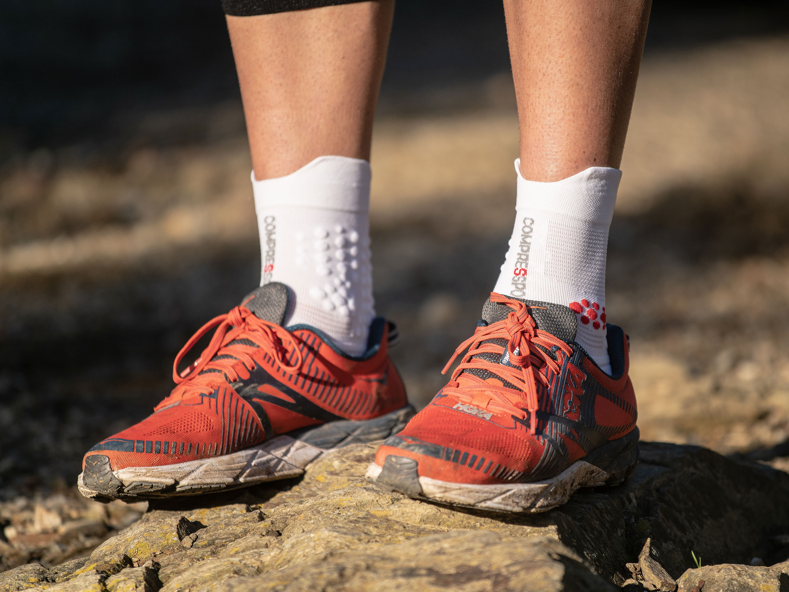 Pro racing socks v3.0 white